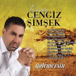 Harputlu Cengiz Şimşek 歌手頭像