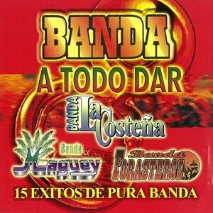Banda La Conteña, Banda Maguey, Banda Forasteros 歌手頭像