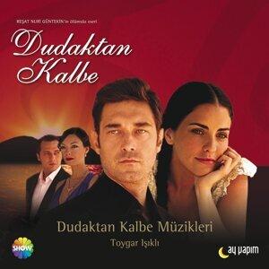 Toygar Isikli 歌手頭像