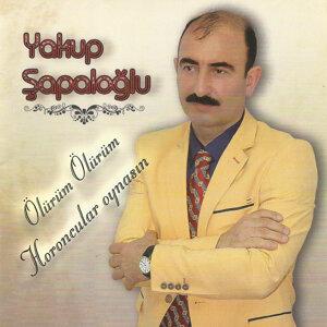 Yakup Şapaloğlu 歌手頭像