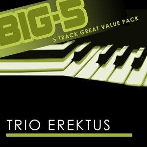 Trio Erektus 歌手頭像