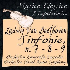 Orchestra Camerata Cassovia, Walter Attanasi, Orchestra Slovak Radio Symphony 歌手頭像