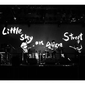 艾倫街的力透帥 (Little Shy on Allen Street) 歌手頭像