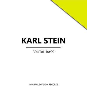 Karl Stein, Karl, Stein 歌手頭像