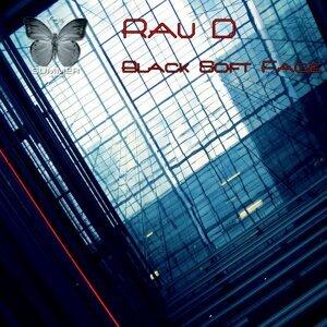 Rau D 歌手頭像