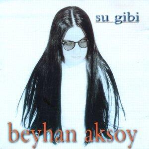 Beyhan Aksoy 歌手頭像