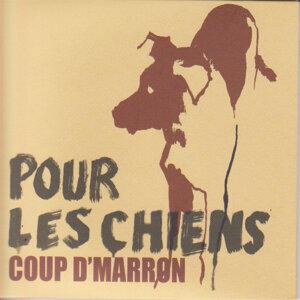 Coup dMarron 歌手頭像