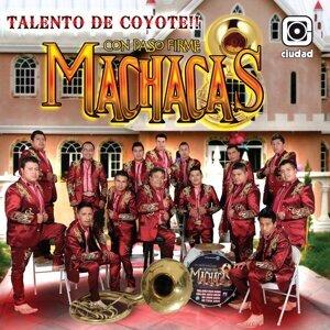 Machacas 歌手頭像