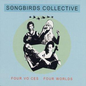 Songbirds Collective 歌手頭像