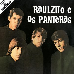 Raulzito E Os Panteras 歌手頭像