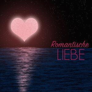 Romantik Musik Akademie 歌手頭像