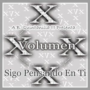 Volumen X