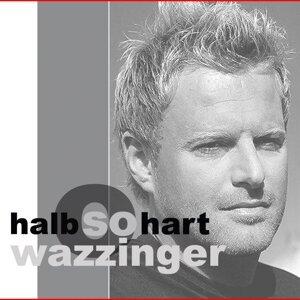 Wazzinger 歌手頭像