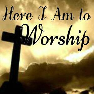 Worship Ensemble 歌手頭像