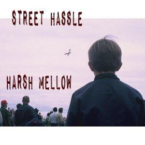 Street Hassle 歌手頭像