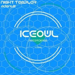 Night Templar 歌手頭像