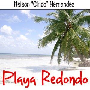 Nelson 'Chico' Hernandez 歌手頭像