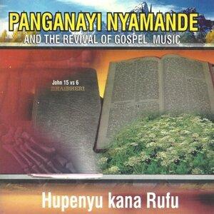 Pangananyi Nyamande & The Revival of Gospel Music 歌手頭像