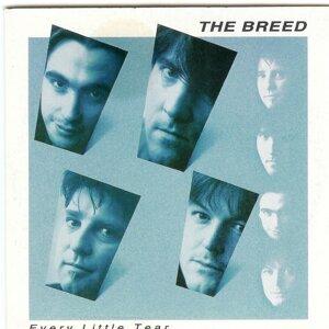 The Breed 歌手頭像