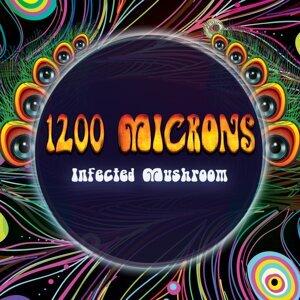 1200 Microns 歌手頭像