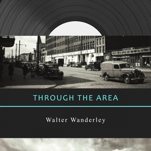 Walter Wanderley 歌手頭像
