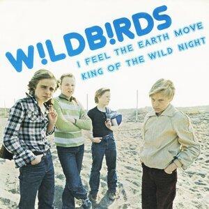 Wildbirds 歌手頭像