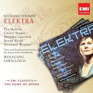Wolfgang Sawallisch/Eva Marton/Cheryl Studer/Marjana Lipovsek/Bernd Weikl/Hermann Winkler 歌手頭像