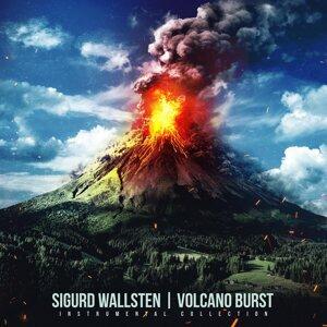 Sigurd Wallsten 歌手頭像