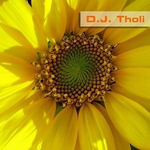 D.J. Tholi 歌手頭像