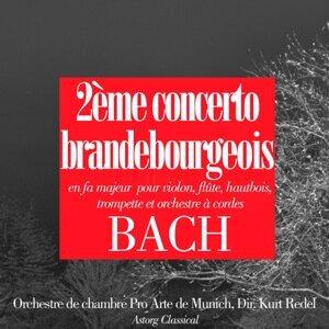 Orchestre de chambre Pro Arte de Munich, Kurt Redel 歌手頭像