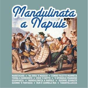Gruppo mandolinistico La vecchia Napoli 歌手頭像