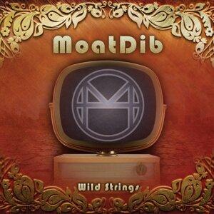Moatdib 歌手頭像