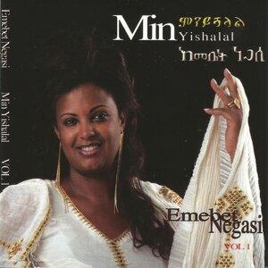 Emebet Negasi 歌手頭像