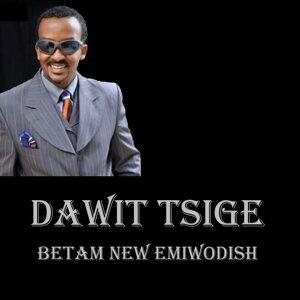 Dawit Tsige 歌手頭像