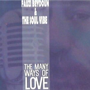 Fauzi Beydoun, The Soul Vibe 歌手頭像