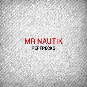 Mr Nautik 歌手頭像