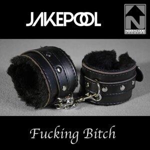 Jakepool 歌手頭像