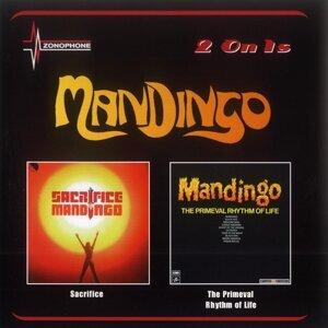 Mandingo 歌手頭像