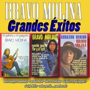 Bravo Molina 歌手頭像