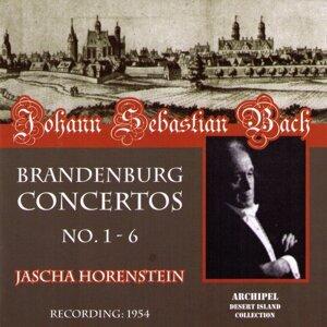 Jascha Horenstein, Paul Angerer, NBC Symphony Orchestra 歌手頭像
