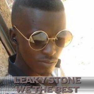 Leaky Stone 歌手頭像