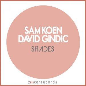 Sam Koen, David Gindic 歌手頭像