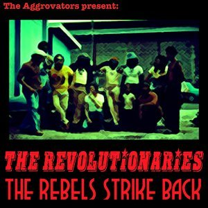 The Revolutionaries 歌手頭像