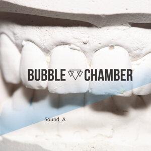 Bubble Chamber 歌手頭像