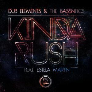 Dub Elements & The Bassnifics 歌手頭像