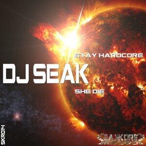 DJ Seak 歌手頭像