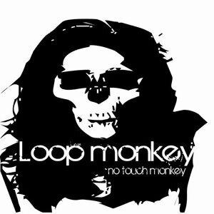 Loop Monkey 歌手頭像