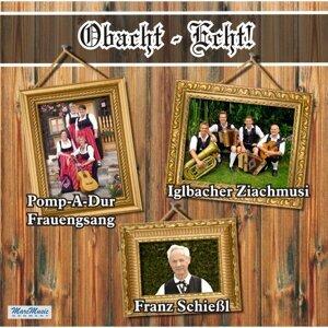 Iglbacher Ziachmusi, Pomp-A-Dur & Franz Schießl 歌手頭像