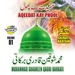 Muhammad Shaukeen Qadri Barkati 歌手頭像