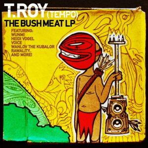T.Roy 歌手頭像